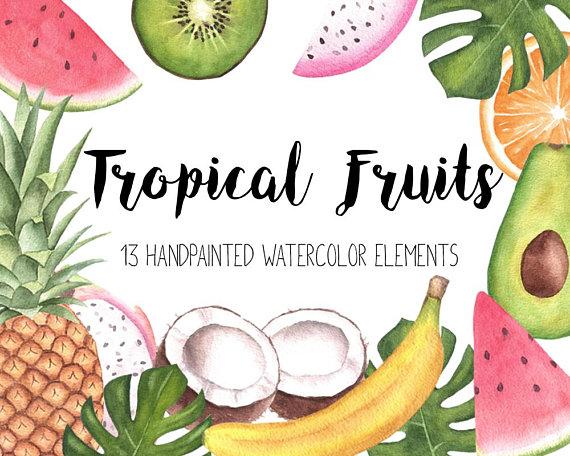 Fruits clipart tropical fruit. Watercolor