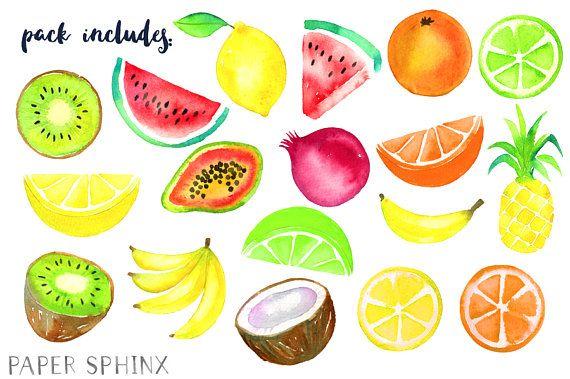 Watercolor clip art . Fruits clipart tropical fruit
