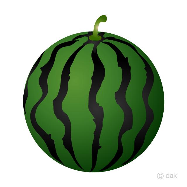 Watermelon clipart green squash. Free picture illustoon