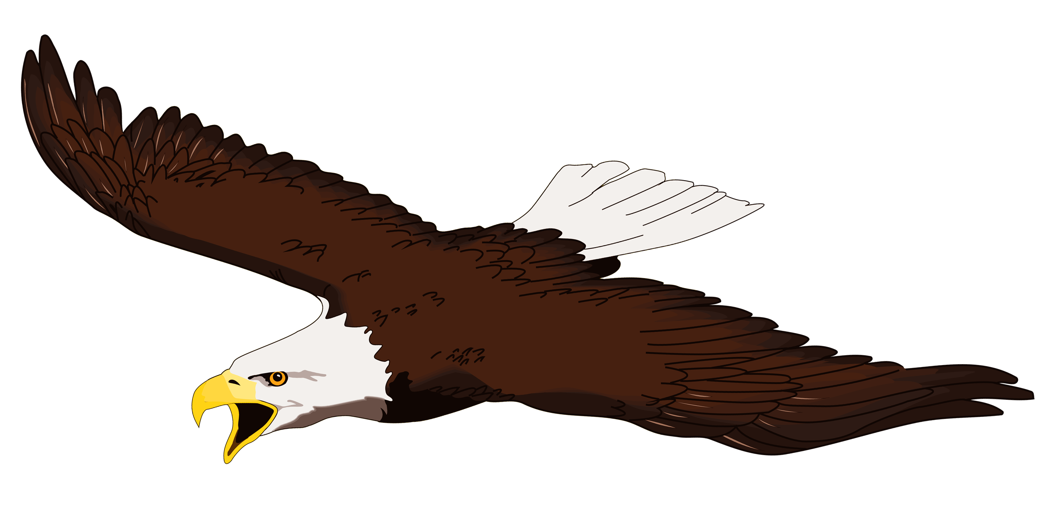 collection of transparent. Eagle clipart cartoon