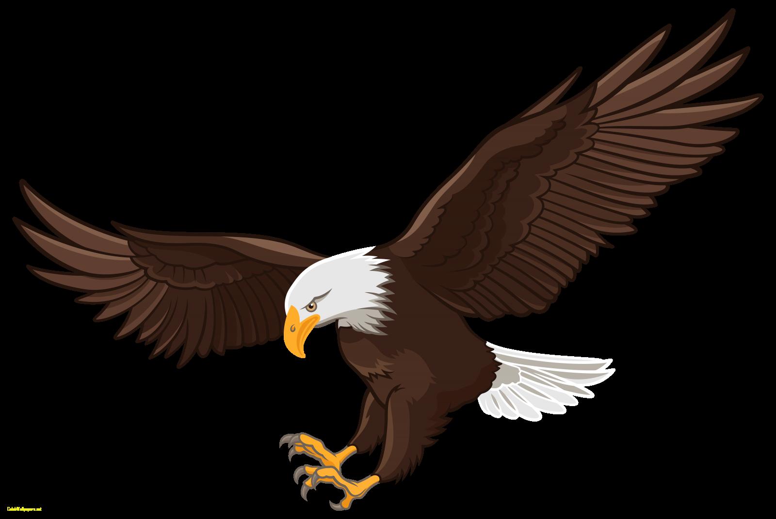 Eagle clipart file. Eagles vastu in images
