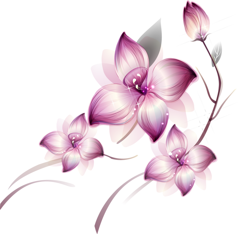 Clipart gallery large flower. Painted transparent pink clipsrt