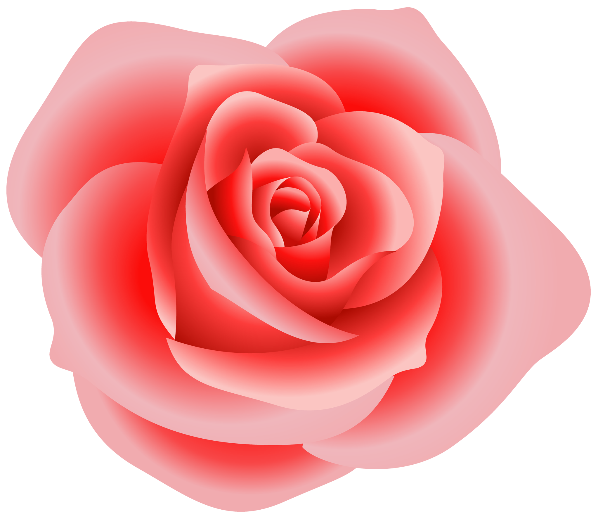 Clipart roses chocolate. Large red rose gallery