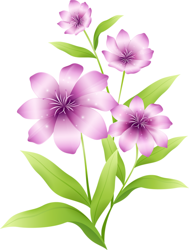 Light pink flowers yopriceville. Clipart gallery large flower