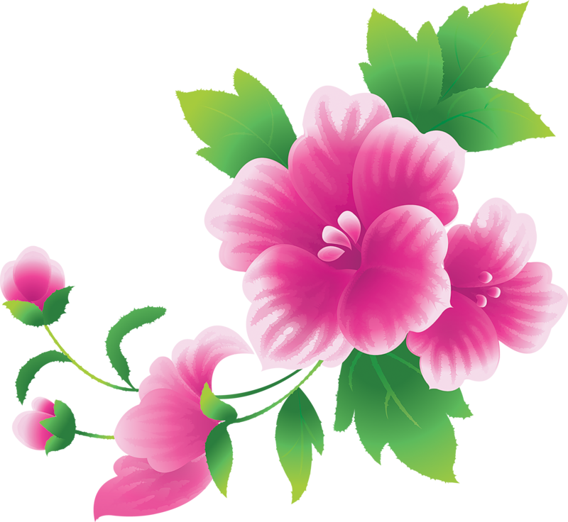 Pink flowers yopriceville high. Clipart gallery large flower