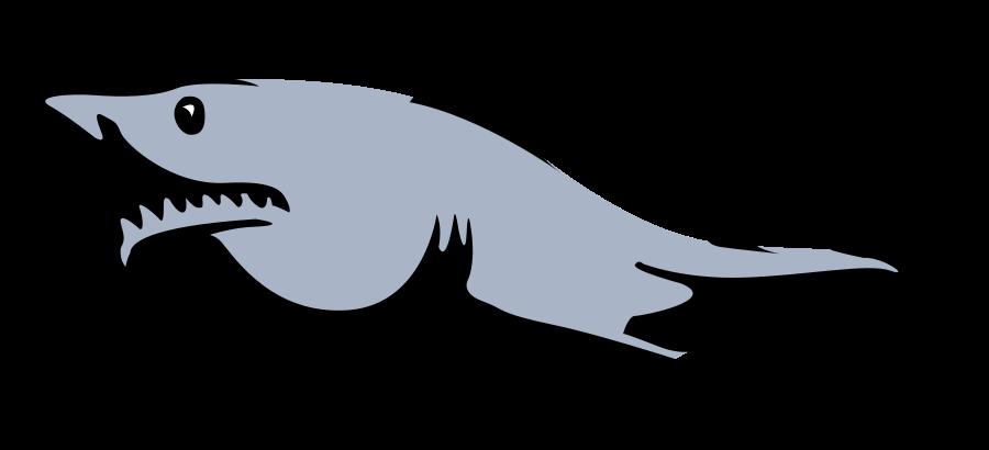Skeleton shark