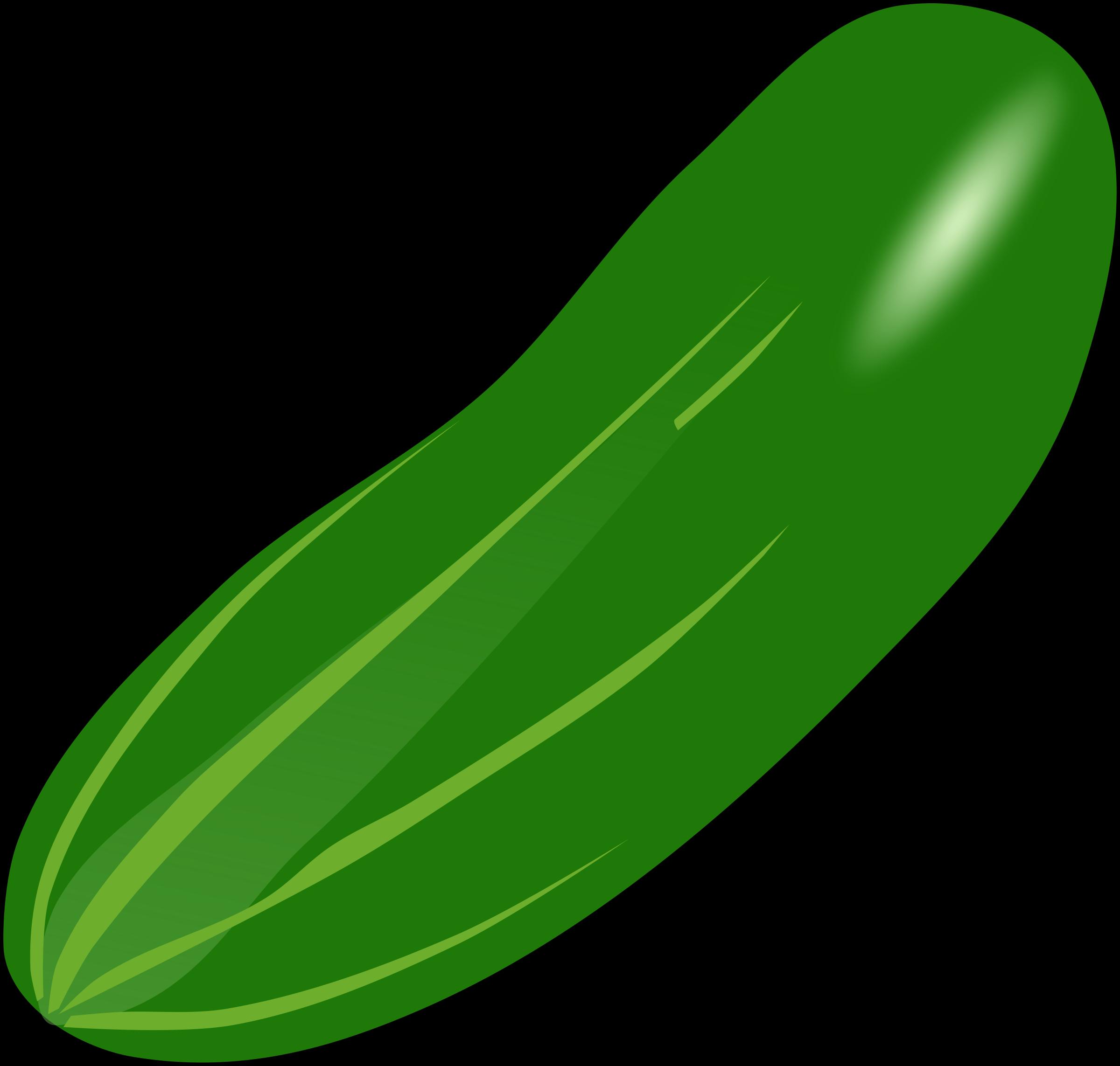 Zucchini clipart pipino. Bean cucumber pencil and