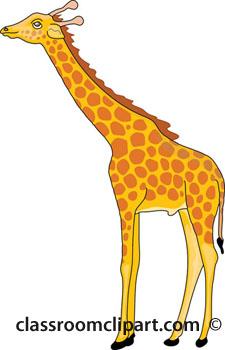 Giraffe clipart. Eating a classroom eatinggiraffeajpg