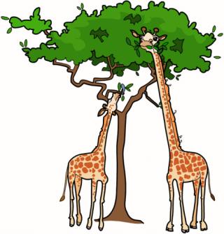 Free adaption environment cliparts. Giraffe clipart adaptation