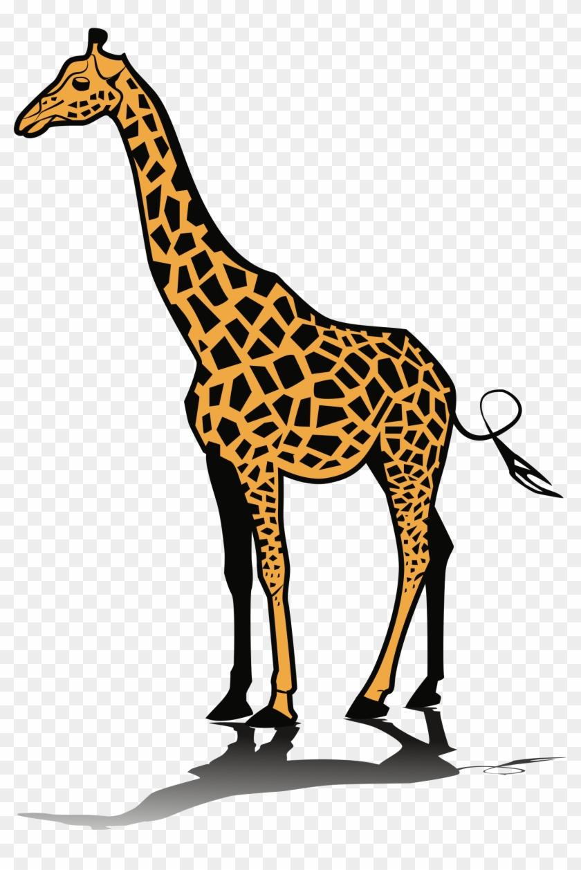 Giraffidae terrestrial animal mammal. Giraffe clipart adaptation