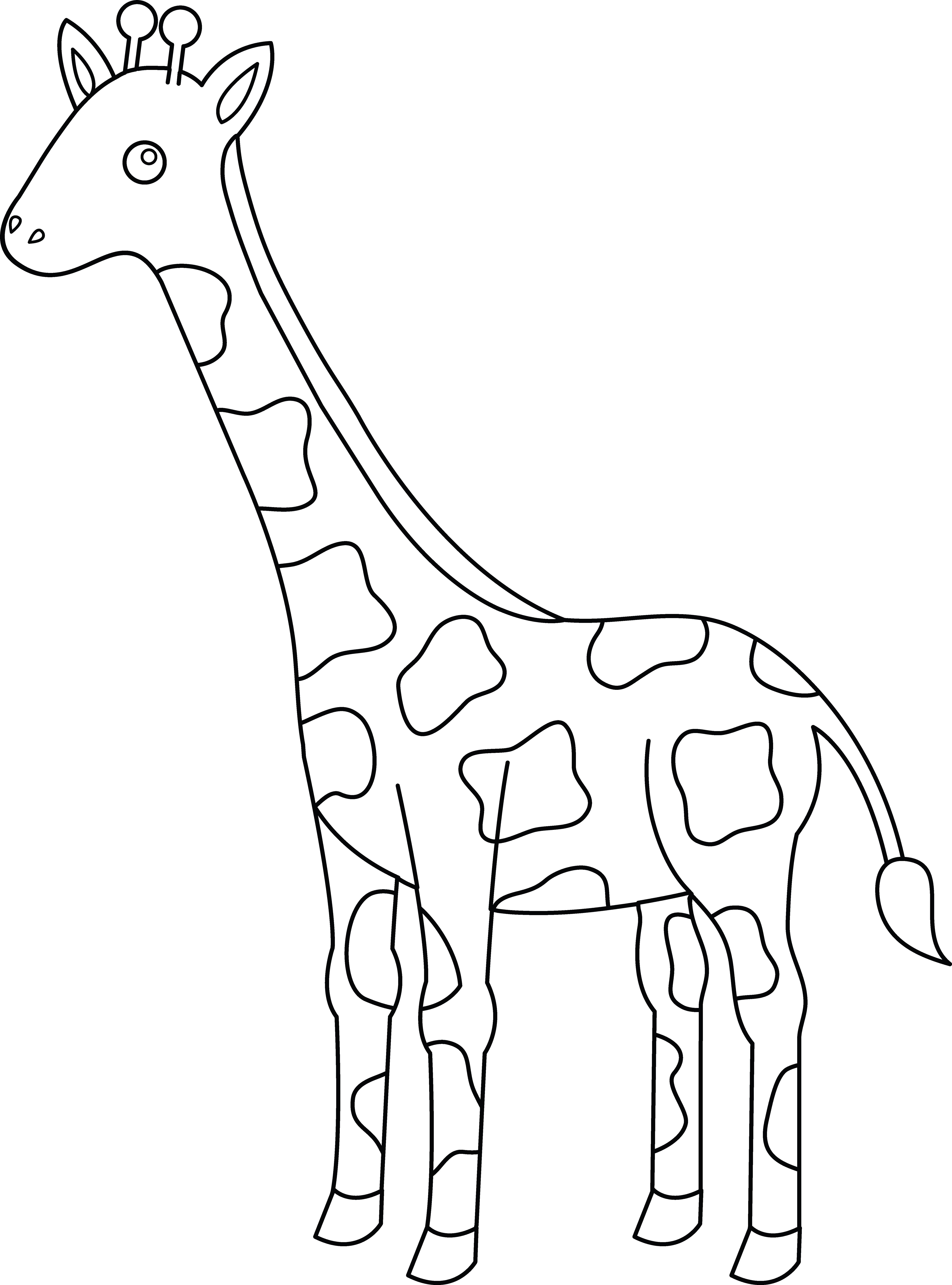 collection of giraffe. E clipart colouring