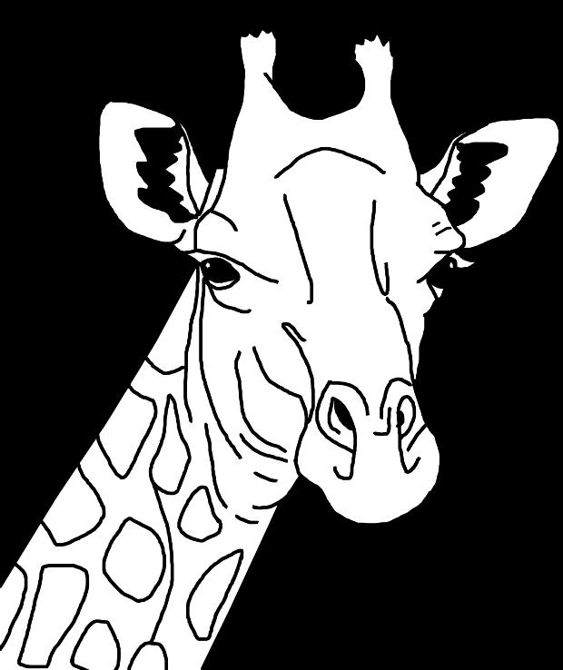 Clipart giraffe black and white. Line art medium image