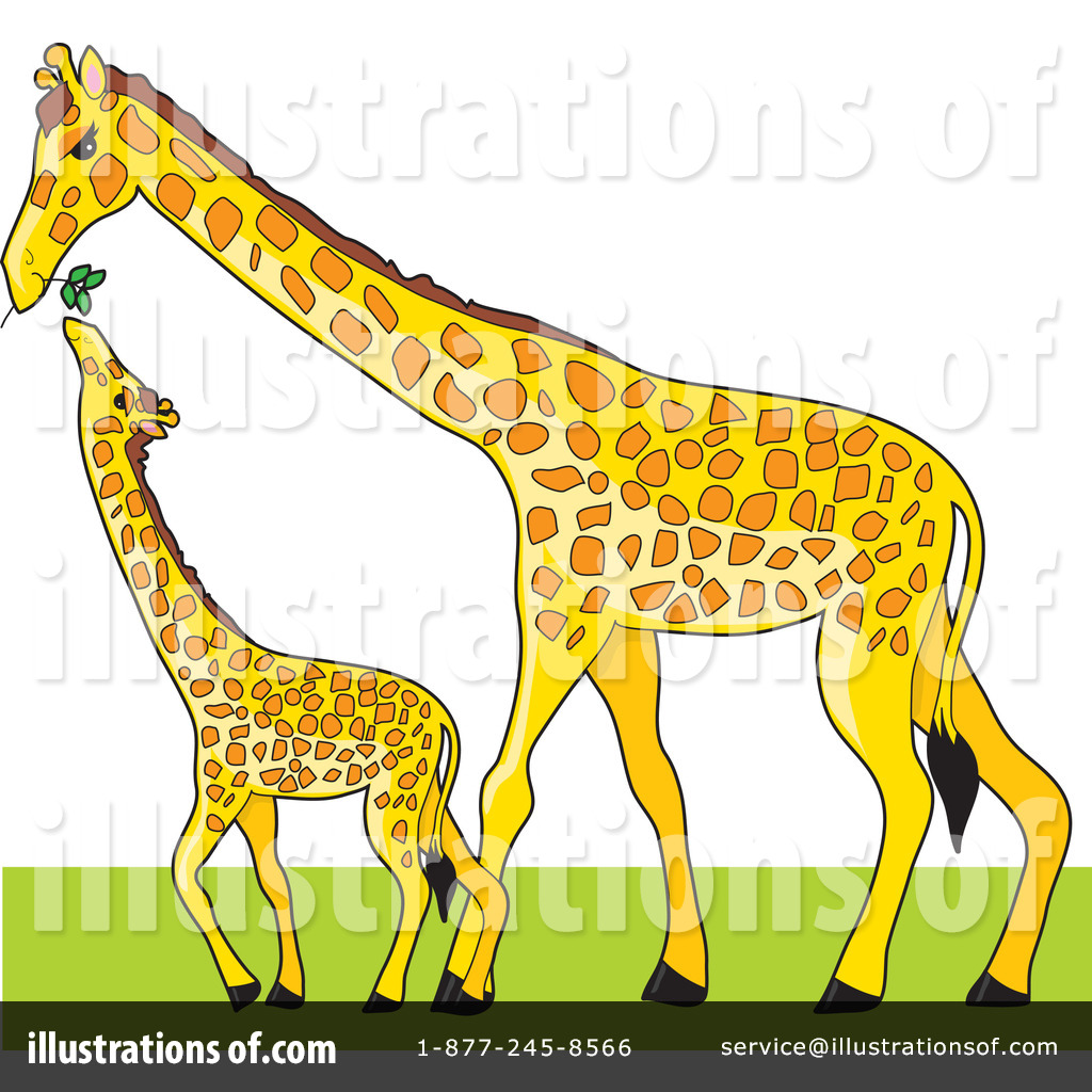 Clipart giraffe calf. Illustration by maria bell