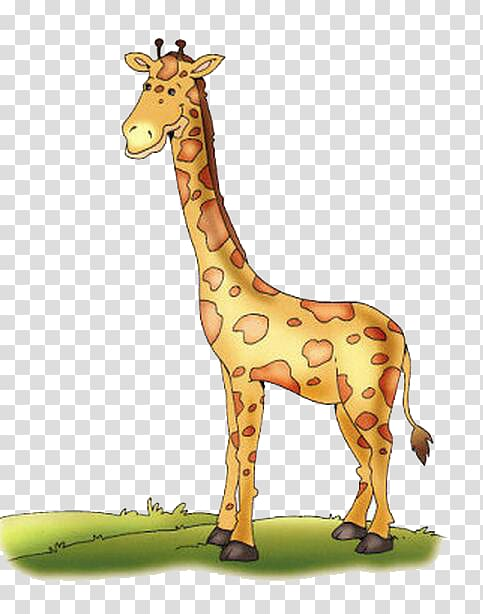 Clipart giraffe caricature. Northern reticulated drawing color