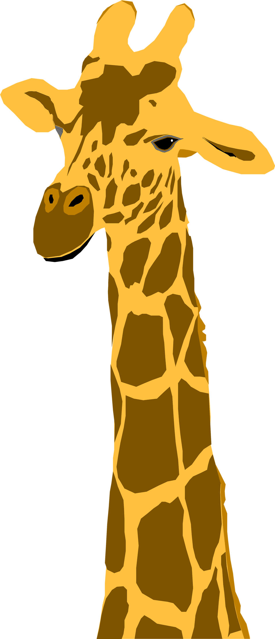 Neck clipart giraffe. Free stock photo illustration