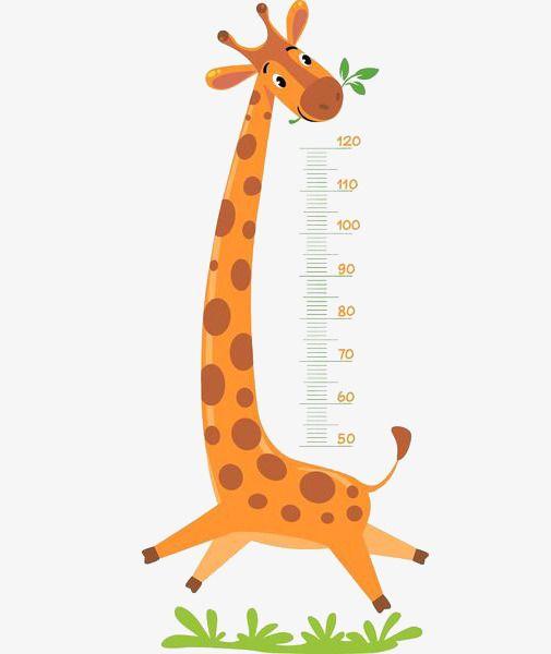 Clipart ruler comic. Giraffe measure height cartoon