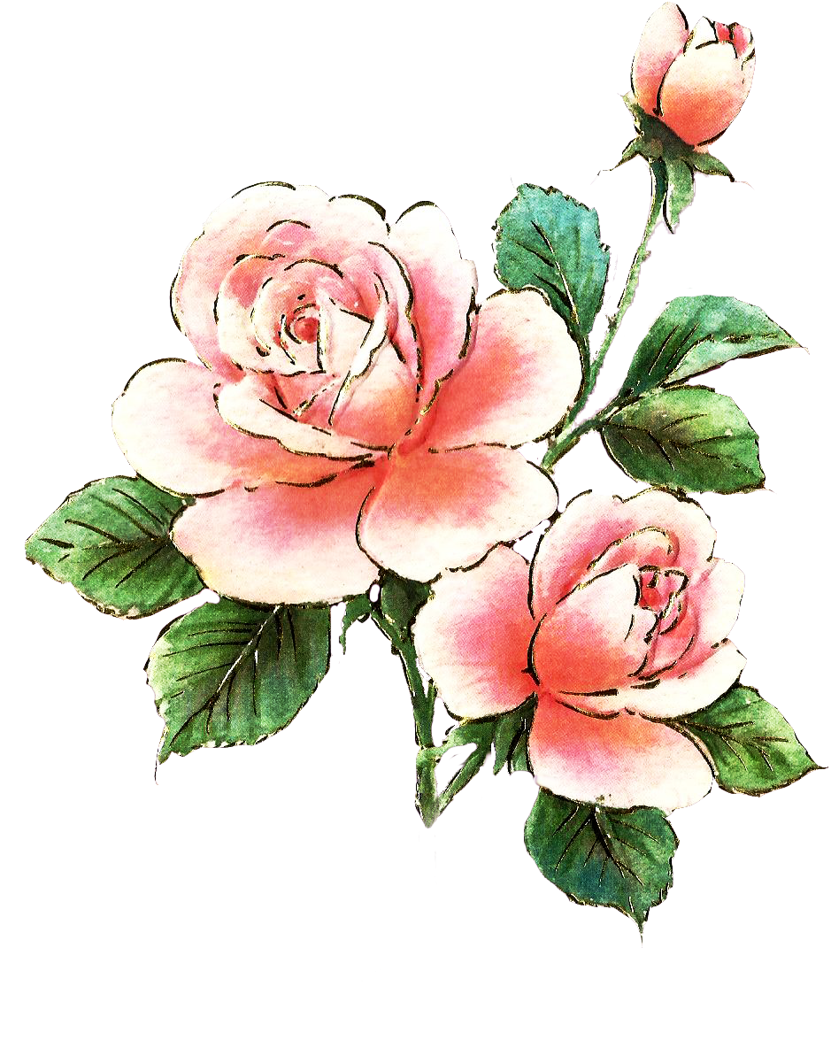 Page clip art me. Clipart roses dying