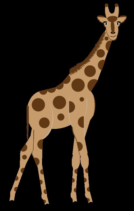 Clipart giraffe hoof. The lion and zebra