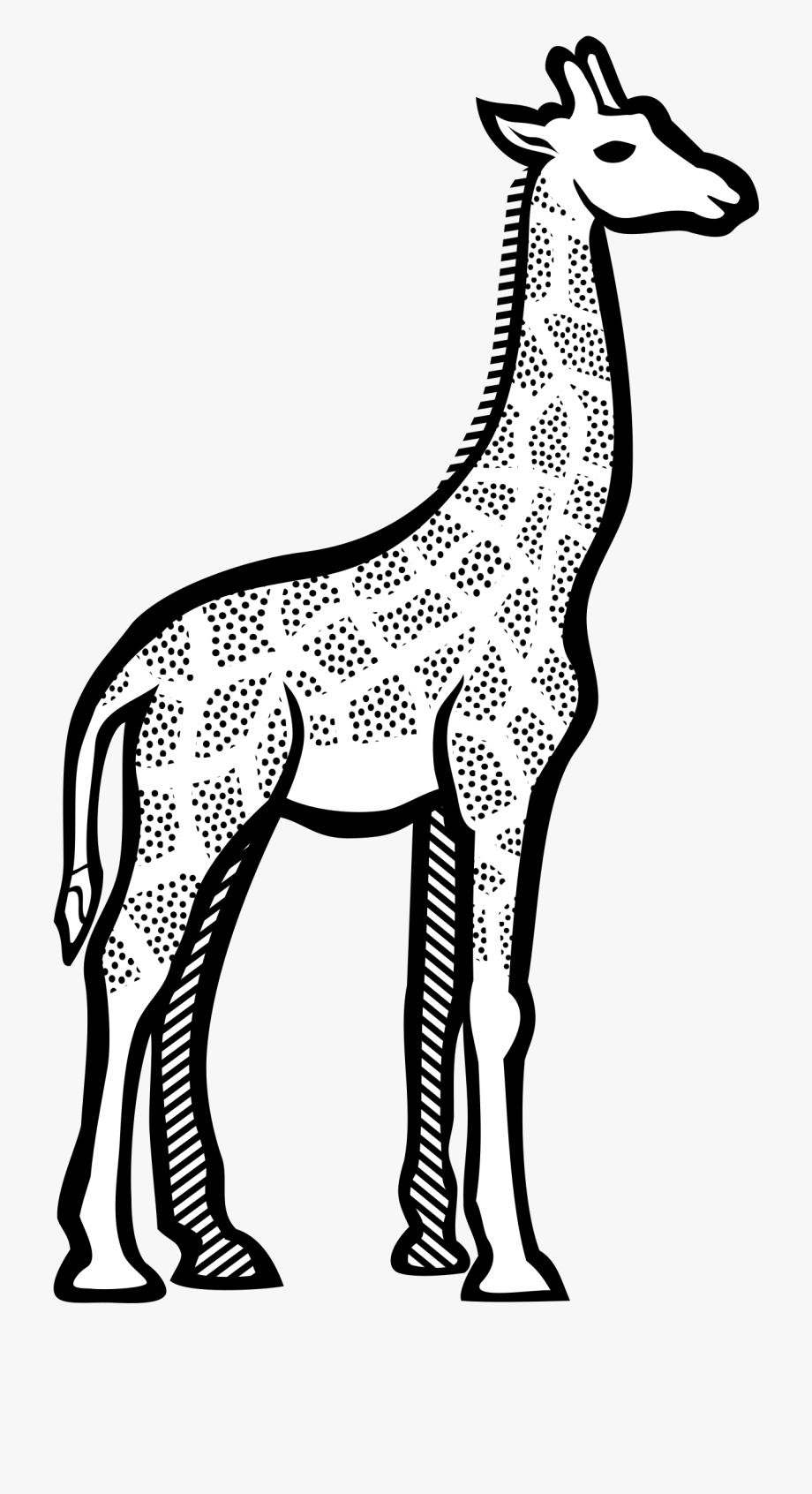 Lineart big cliparts cartoons. Giraffe clipart line art