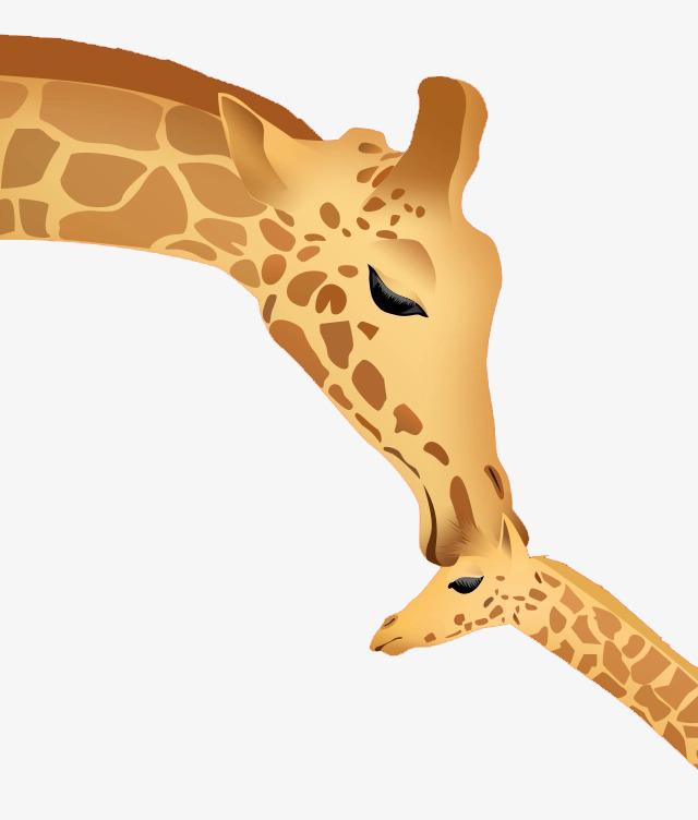 giraffe clipart mother baby giraffe