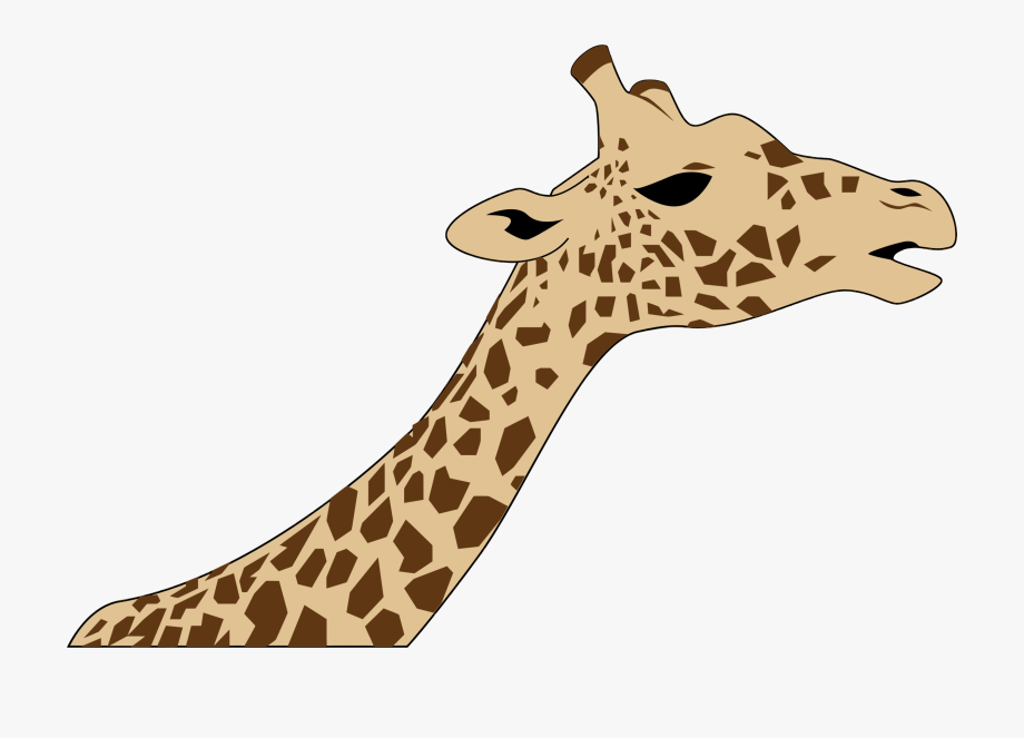 Giraffe clipart neck. Heads up drawing of