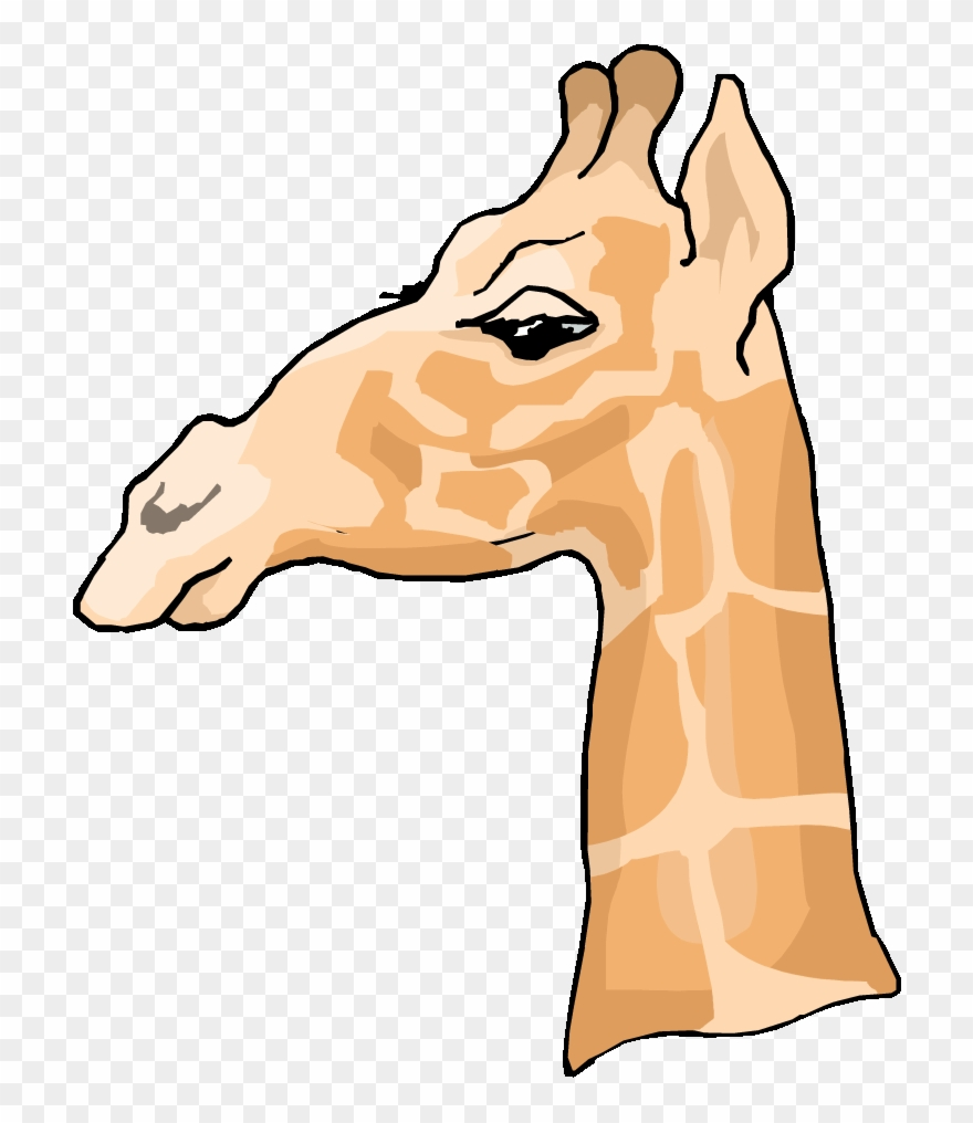 Free side of a. Giraffe clipart profile