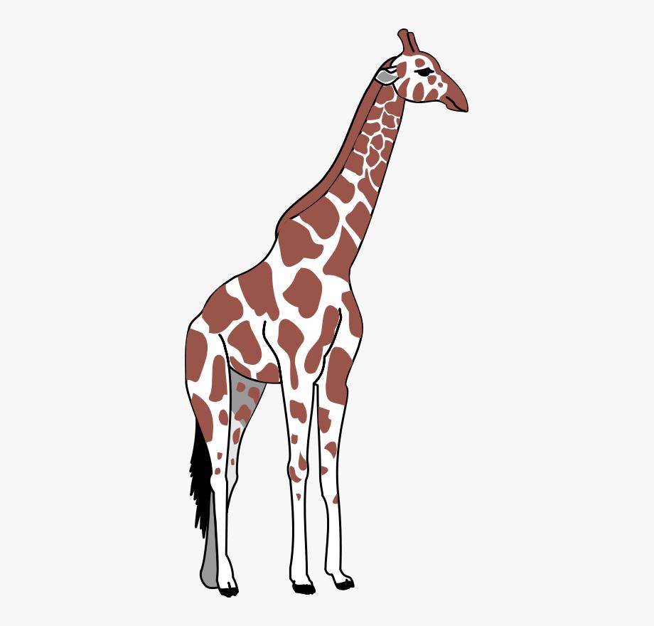 Giraffe clipart tall giraffe. Brown clip art clipartt