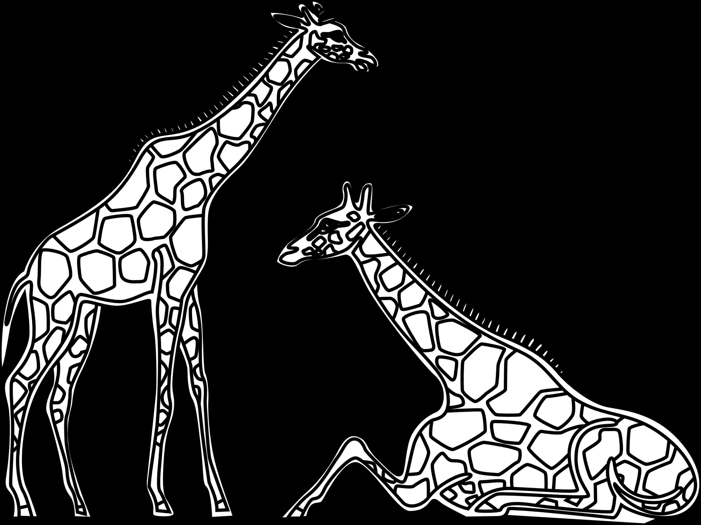 Giraffe clipart zarafa. Christmas clipartfest clip clipartbarn