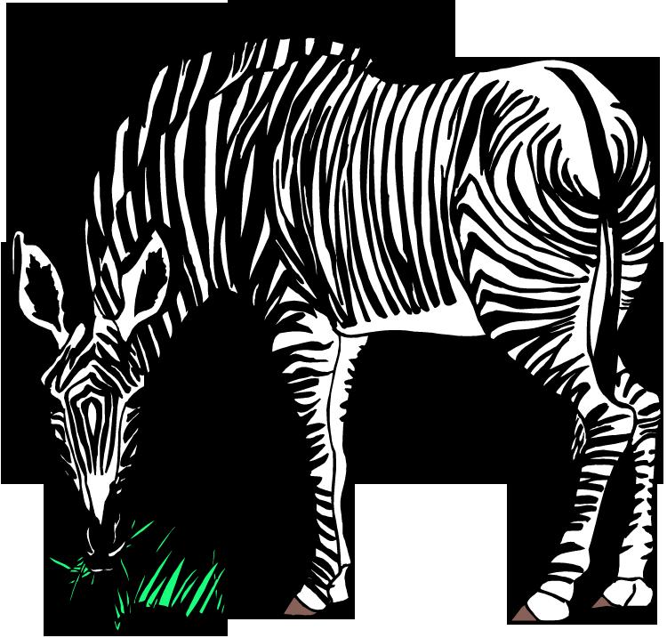 clipart zebra mother baby