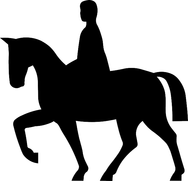 And rider silhouette at. Horse clipart horse ranch