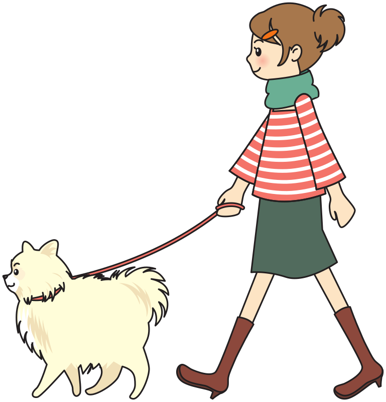 Pet walk dog