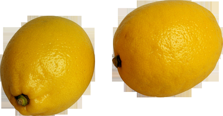 Lemon eleven isolated stock. Lemons clipart kiwi