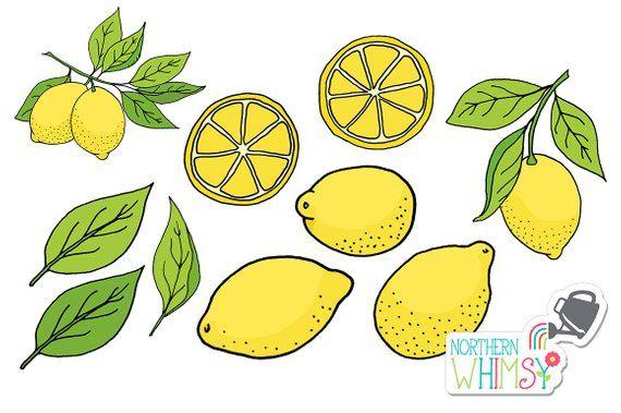 Lemon clip art hand. Lemons clipart illustration