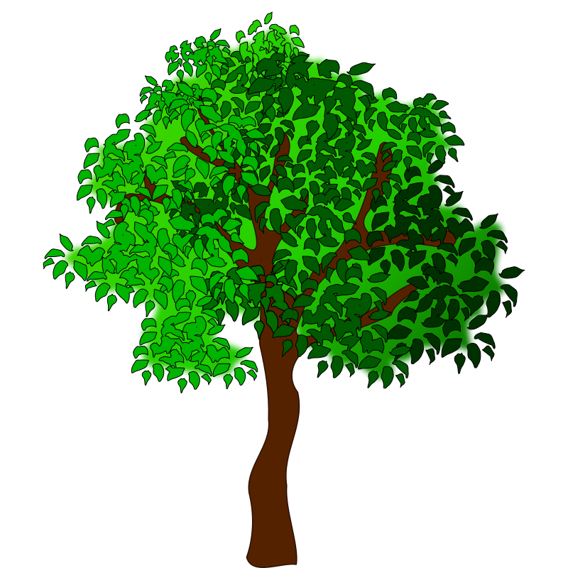 Image of trees clip. Tree clipart february