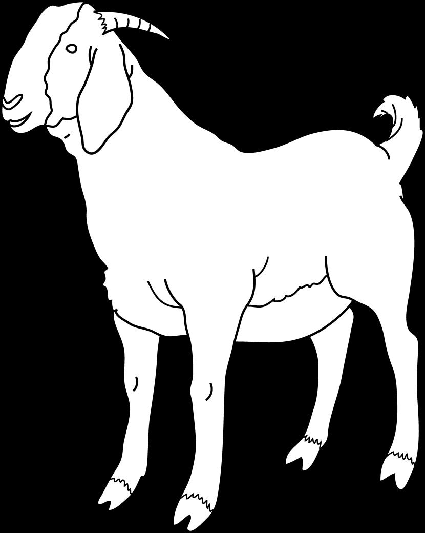 Cute clip art images. Goat clipart male goat