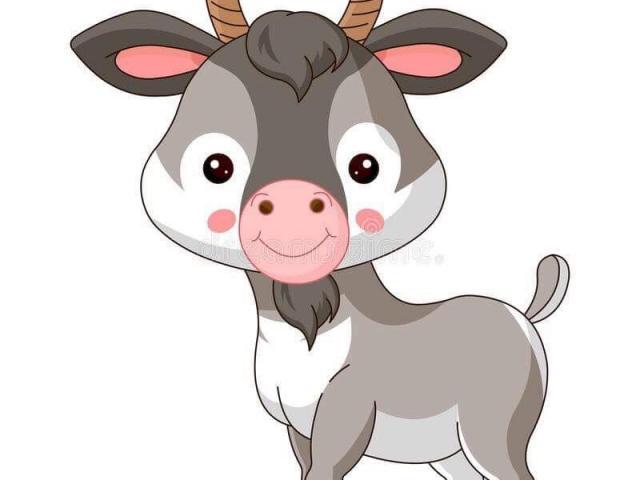 Free download clip art. Goat clipart baby lemur