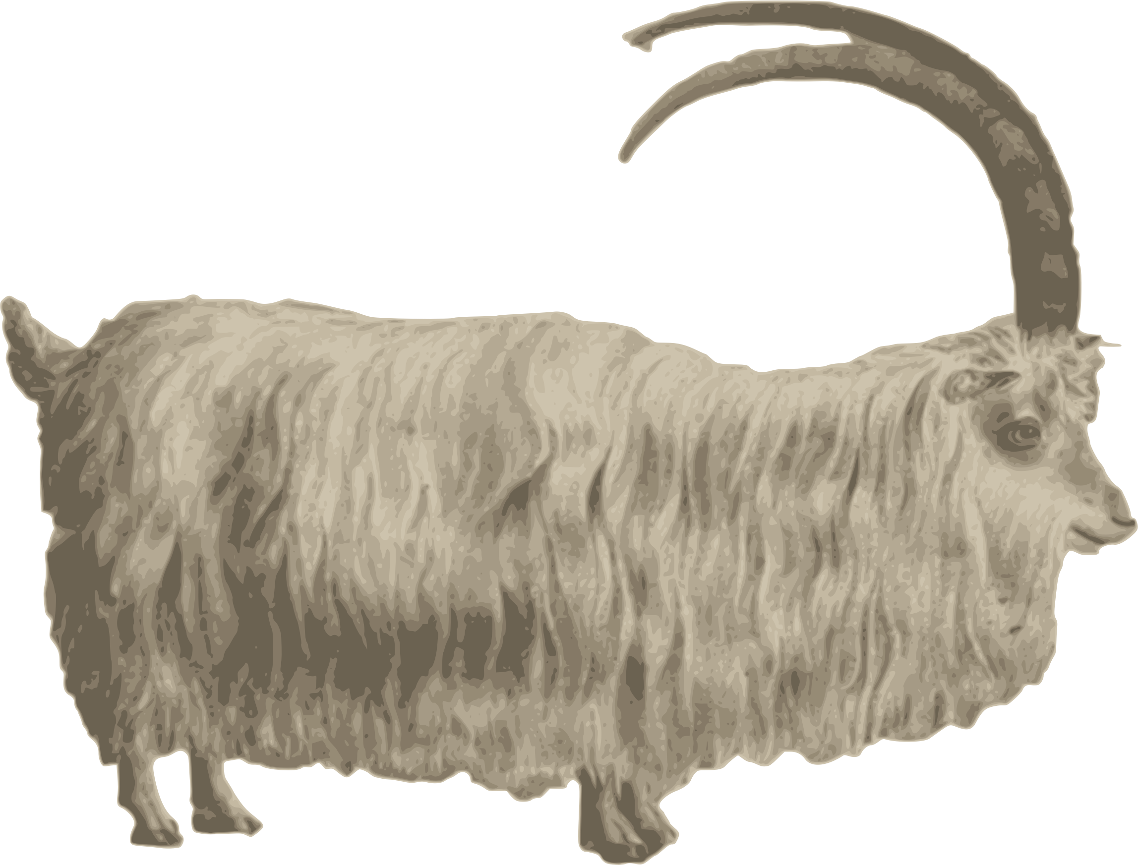 Gafr mynydd mountain icons. Goat clipart strong