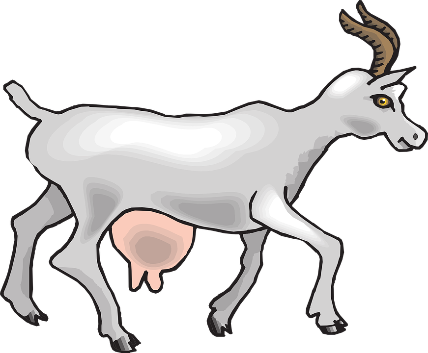 Goat she graphics illustrations. Clipart walking clip art