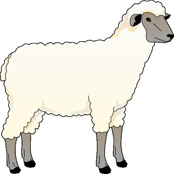 lamb clipart creche