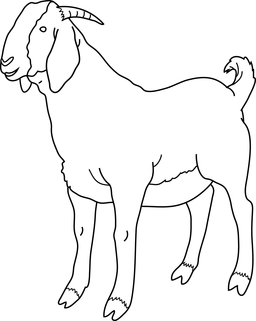 goat clipart coloring page