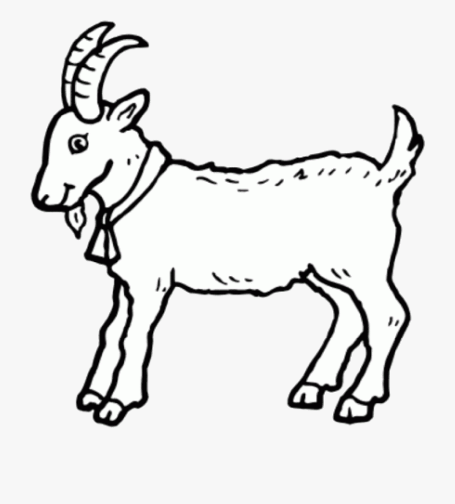 Clipart goat drawing. Animal coloring pages free