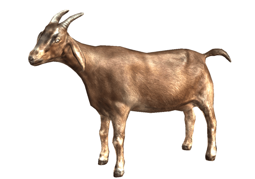 Png free images toppng. Goat clipart brown goat