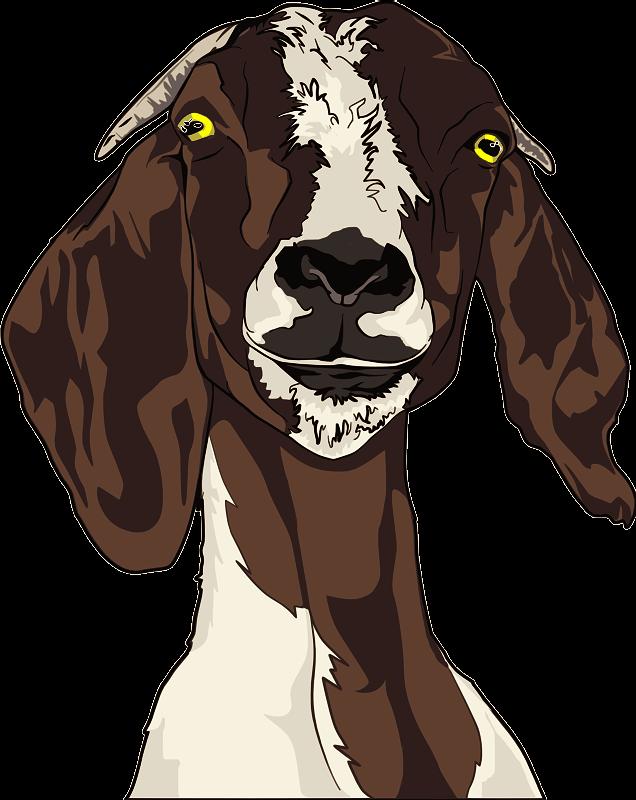 Clipart goat head. Medium image png