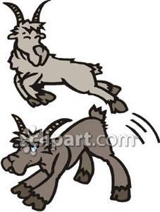 Cartoon goats royalty free. Goat clipart jumping