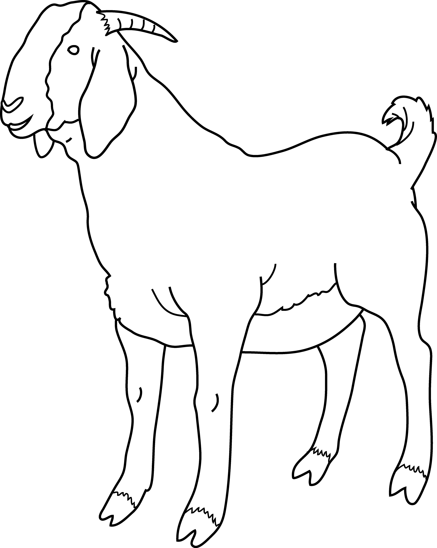 Goat clipart goat mask. Ink line art stock