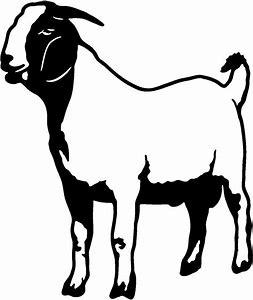 Clinic . Clipart goat market goat