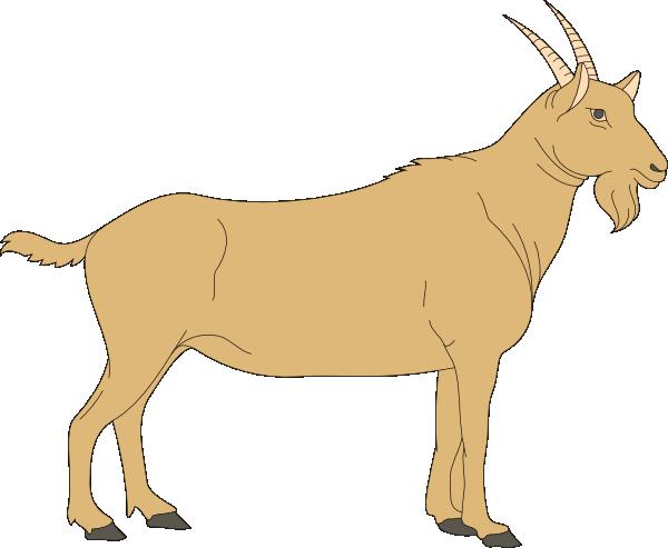 Free cliparts download clip. Clipart goat part