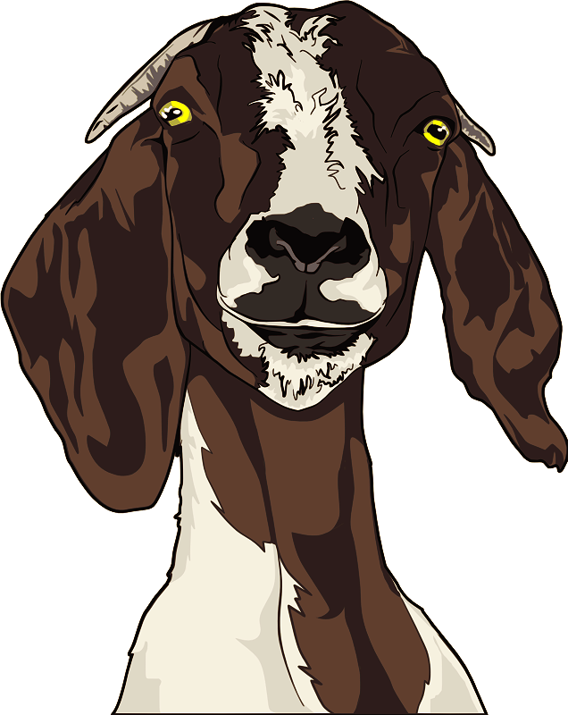 Goat clipart toon. Free to use public