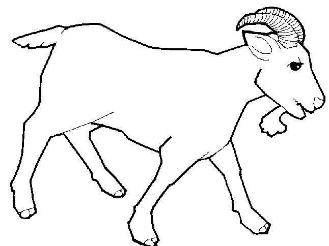 Drawing artwork in . Goat clipart line art