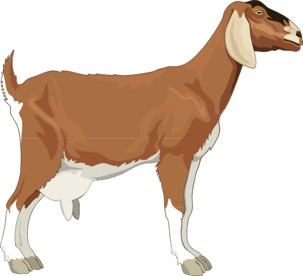 Brown goat clip art. Farmers clipart gambar